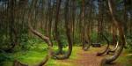 Самые необычные достопримечательности Польши
